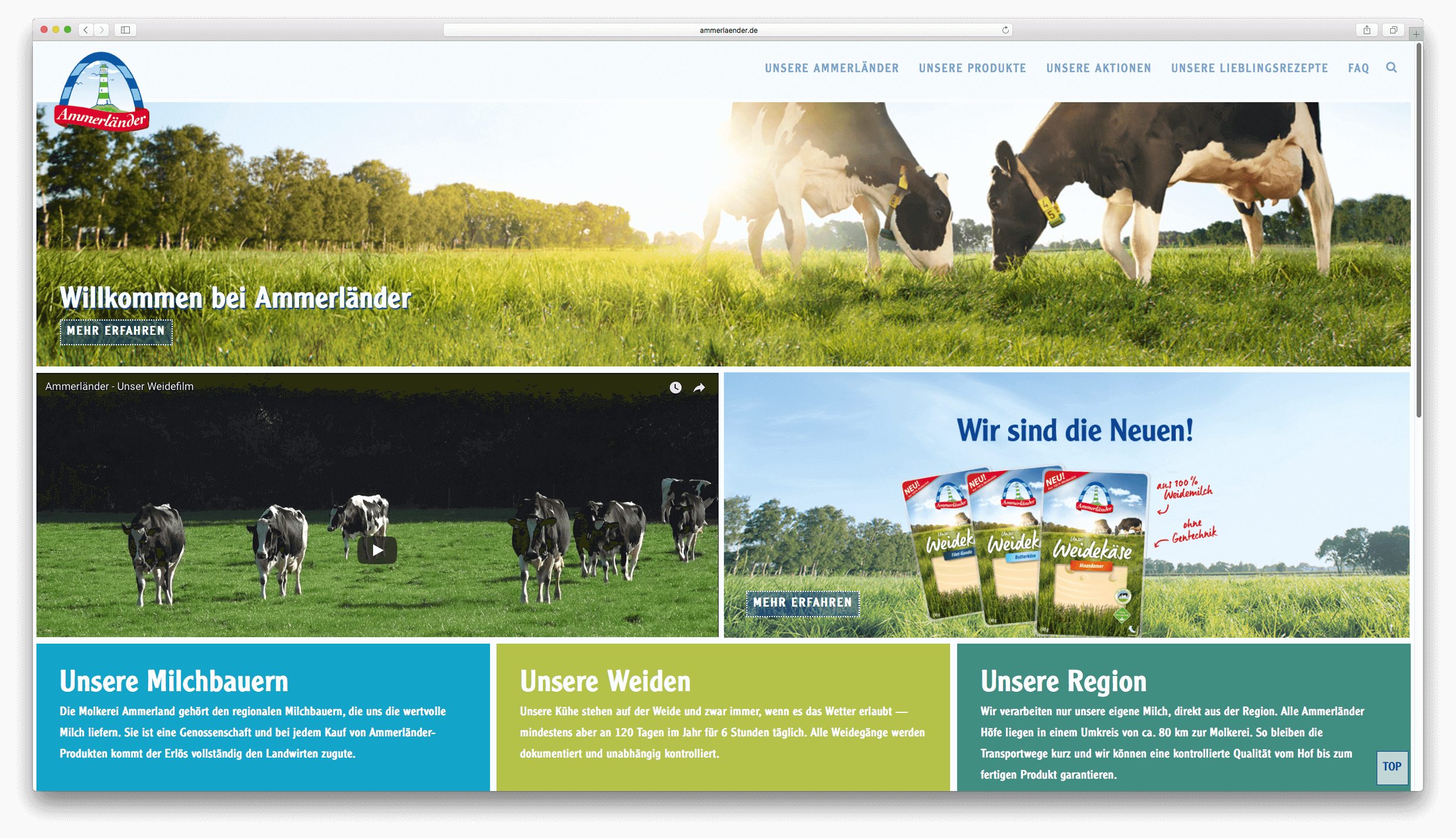 Ammerländer Website Screen